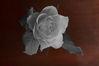 Selective_Rose_small.jpg